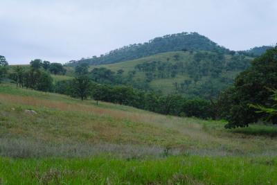 Terreno Monticello, Zapopan.