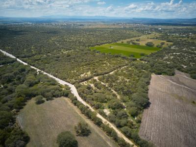 16.8 Hectareas in Marroquin de Abajo