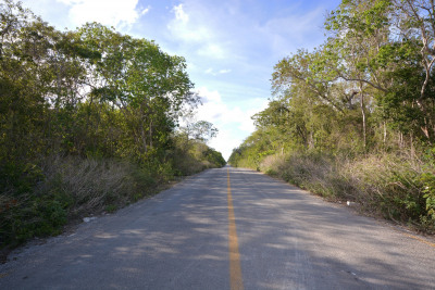 LOT 3 IN TULUM TO DEVELOP