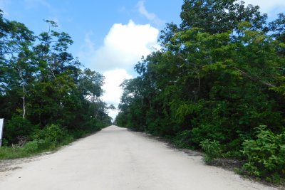 RESIDENTIAL LOT 5  IN REGION 10, THE NEW DEVELOPMENT ZONE IN TULUM