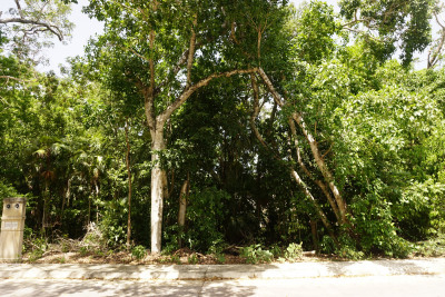 2 LOTS TOGETHER OF 1,761.51 SQ FT EACH IN A GATED COMMUNITY